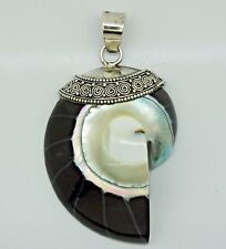 RARE Nautilus Shell Pendant in 925 Sterling Silver (New) - 5.5 cm