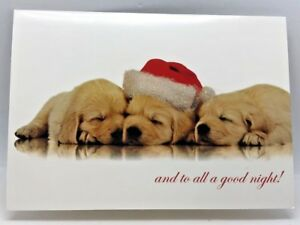 Merry Christmas Puppies.Details About 14 Glitter 3 Puppies Merry Christmas Cards And Envelops