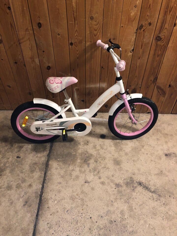 Pigecykel, anden type