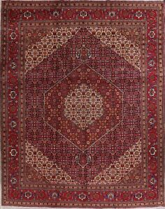 Traditional-Hand-Knotted-Kashmar-Geometric-Oriental-Area-Rug-Wool-Carpet-10-039-x12-039