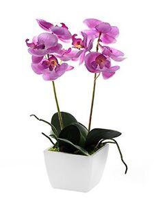 Artificiel-rose-Mini-Orchidee-en-un-Pot-rose