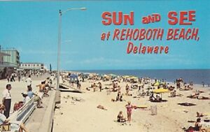 Delaware-Postcard-034-Sun-and-See-Rehoboth-Beach-DE-Atlantic-Coast-U1-10