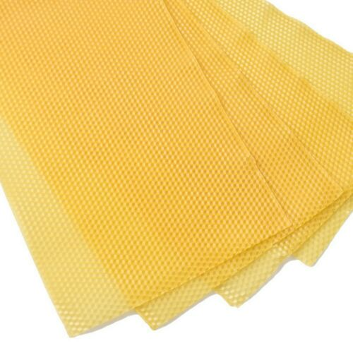 10 Yellow Beekeeping Honeycomb Wax Frames Foundation Honey Hive Equipment Tools