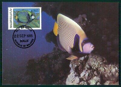 Malediven Mk 1986 Fauna Fische Fish Kaiserfisch Angelfish Maximumkarte Mc En29