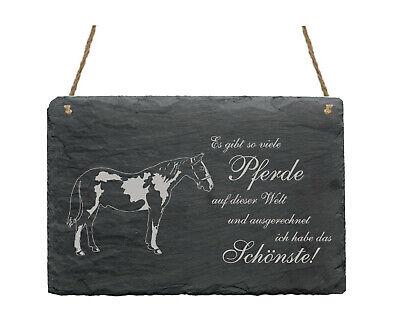Schiefertafel « SCHECKE SCHÖNSTES PFERD » Spruch Pferde Pinto Dekoration Deko