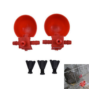5X-Bird-Coop-Feed-Automatic-Poultry-Water-Drinking-Cups-Chicken-Fowl-Drinker-QY