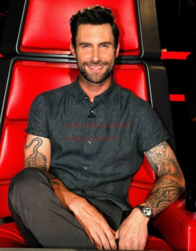 ADAM LEVINE Poster 24 inch by 36 inch A Hollywood Celebrity Art Photo Poster