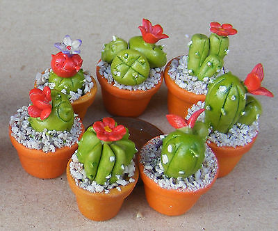 1:12 One Small Ceramic Cactus Red Flower In A Pot Dolls House Miniature Garden