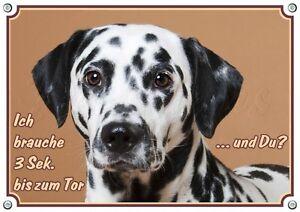 Dalmatian - Plaque de porte en métal pour panneau d'avertissement pour chien, massive jusqu'à DIN A3