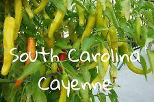 (25+) South Carolina Cayenne Pepper Seeds Charleston hot
