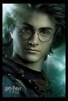 Harry Potter And The Goblet Of Fire Movie Poster Print : (harry) - 11 X 17