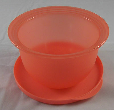 Tupperware Schüssel Mit Deckel : tupperware j 45 junge welle 550 ml sch ssel dose mit deckel lachs rot neu ebay ~ Watch28wear.com Haus und Dekorationen