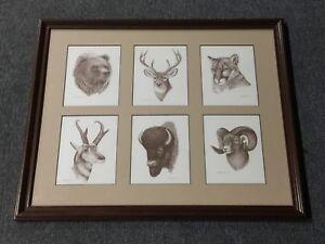 21-5-034-x-17-5-034-FRAMED-ARTWORK-WILDLIFE-PRINTS-BLACK-amp-WHITE-DEER-BEAR-BISON-LION