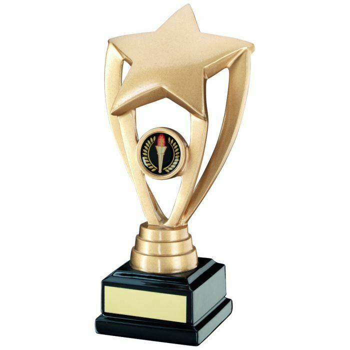 Generic Trophy  in 3 Sizes, Free Engraving up to 30 Letters