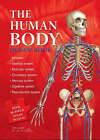 Human Body Jigsaw Book by Bonnier Publishing Australia (Board book, 2006)