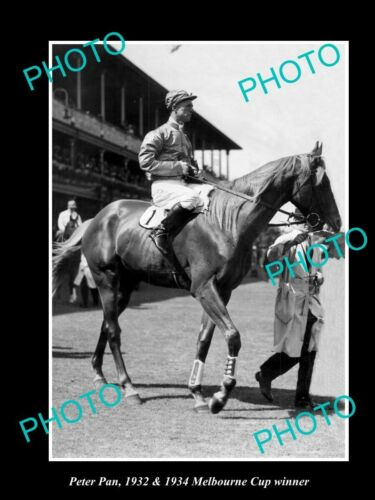 OLD 6 X 4 HORSE RACING PHOTO OF PETER PAN, 1932 & 1934 MELBOURNE CUP WINNER 3