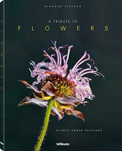 Tribute-to-Flowers-Plants-Under-Pressure-by-Richard-Fischer-NEW-Book-FREE-amp-F
