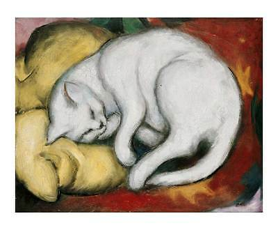 Cats Red and White  by Franz Marc   Giclee Canvas Print Repro