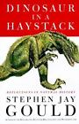 Dinosaur in a Haystack : Reflections in Natural History by Stephen Jay Gould (1995, Hardcover)