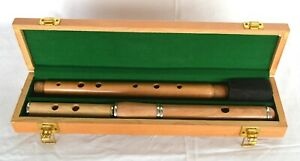 B-Stock Irish Flute Traditional Keyless with Presentation case by Clearwater