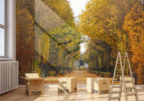 Details about  /3D Trees Road 434 Wallpaper Murals Wall Print Wallpaper Mural AJ WALLPAPER UK
