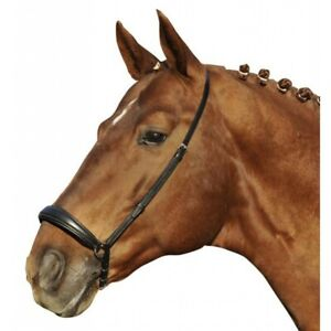 Black German Leather Padded Raised Comfort Flash Bridle With Reins Cob Size