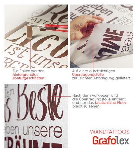 Mural De Cuisine Règles Salle à manger Proverbes Mur Sticker Tatouage bon appétit ws22
