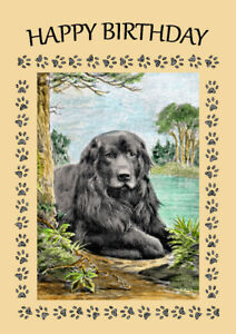 NEWFOUNDLAND BLACK DOG GREAT DOG BIRTHDAY GREETINGS NOTE ...
