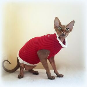 Adult-S-DRESS-with-pearls-top-for-a-Sphynx-cat-clothes-pet-jumper-HOTSPHYNX