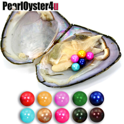 5 Round  Pearls Mixed Color 6-7mm  AAA Pearls 1Piece  Freshwater Oyster