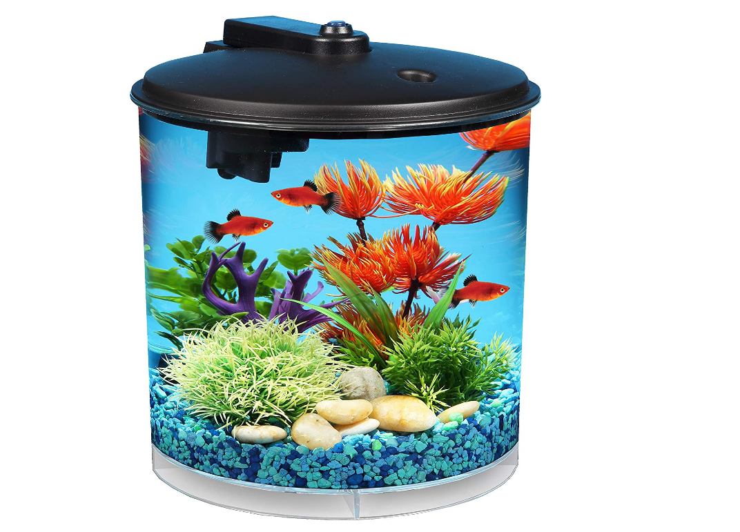 Aquarium Starter Kit Power Filter Battery Operated Light Corner Fish Tank Led For Sale Online Ebay