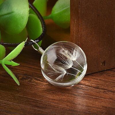 Retro Women Real Dandelion Glass Ball Bottle Pendant Long Leather Chain Necklace