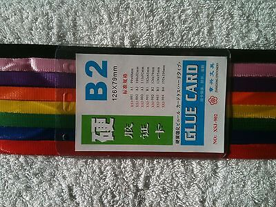 200 x B2 Plastic Pouch with Lanyards BULK LOT CHEAP | eBay