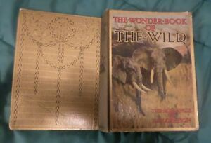 The-Wonder-Book-of-the-Wild-Good-USED-OLD-Annual-Hardback