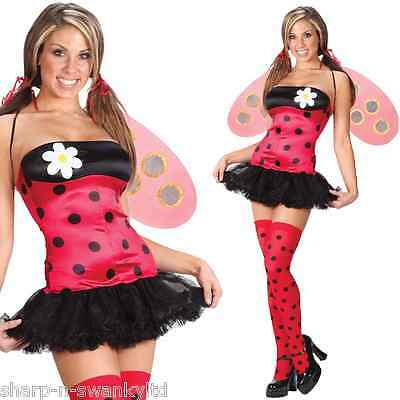 Ladies Sexy Ladybird Ladybug with Wings & Stockings Fancy Dress Costume Outfit