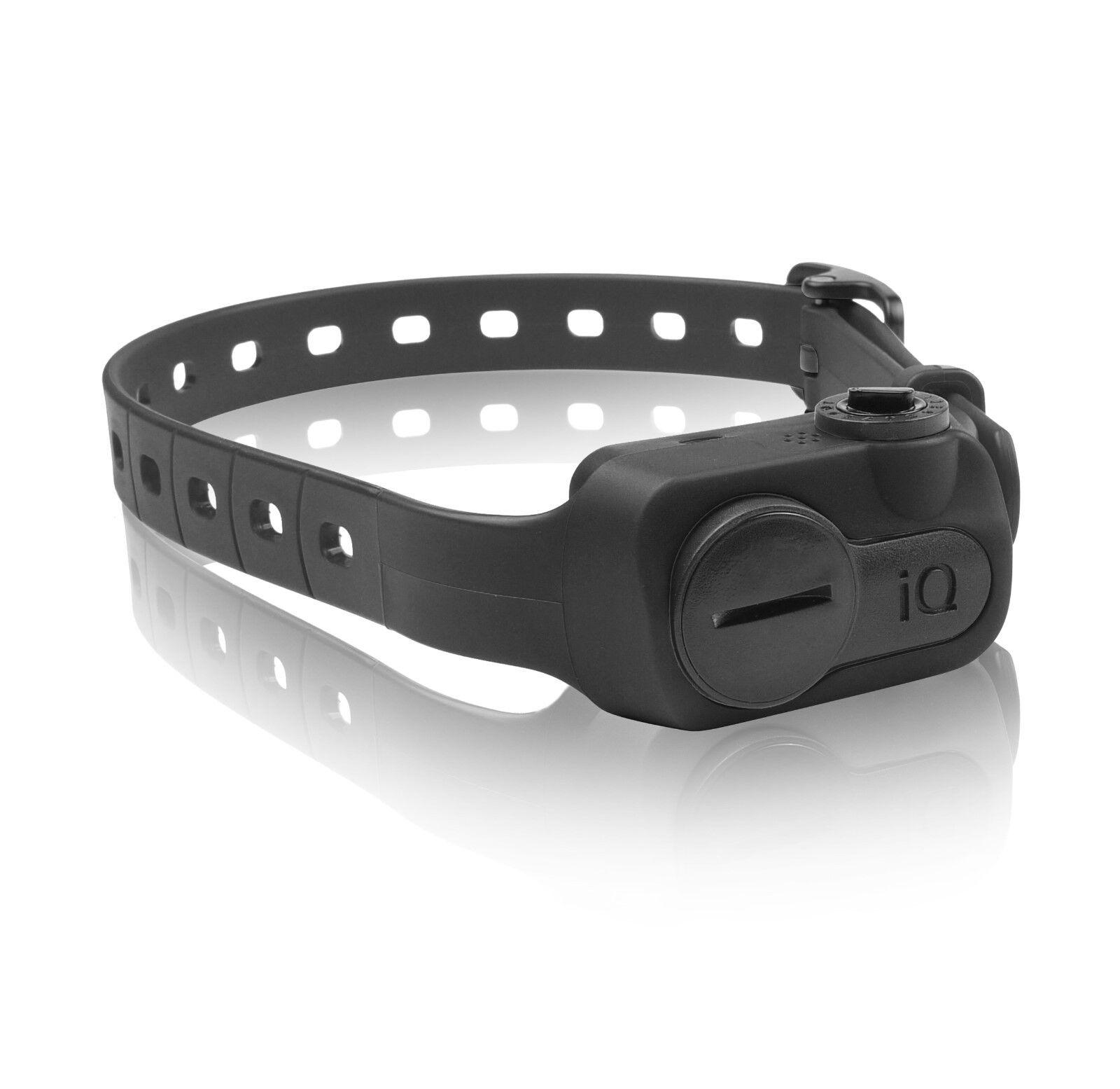 da non perdere! Dogtra iQ iQ iQ No Bark Collar nero  autentico online