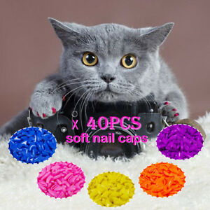Image is loading 20-40pcs-Soft-Cat-Nail-Caps-for-Kitten-