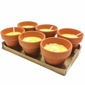 Vaso Di Coccio.Dettagli Su Set 6 Pezzi Candela Alla Citronella Vaso Di Terracotta Coccio Anti Zanzare Hmj