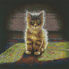Dimensions Counted Cross Stitch Kit Warm and Fuzzy Kitten