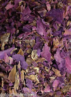 Red Lotus Flowers C/s Nice Organic Aphrodisiac Herb Smoke & Tea Fast Shipping