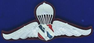 Royal Thai Police Jump Parachute Wing Badge Pin Pilot Wing W-3