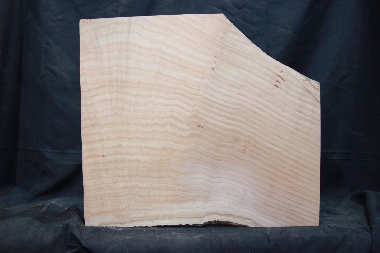 Cedar 1-piece    Bass guitar body blank    1531