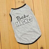 NEW Cute babe magnet Small Dog Cat Pet Clothes T Shirt Apparel Clothes XS/S/M/L
