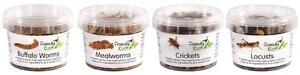 Insectes Comestibles Comestible Bugs Bush Tucker Tub Mini Mix 74g Croquants Critters-afficher Le Titre D'origine