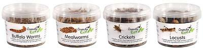 Edible Insects Edible Bugs Bush Tucker Tub Mini Mix 74g Crunchy Critters