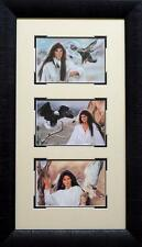 Maija Ladyhawke Framed Trilogy  14 x 24