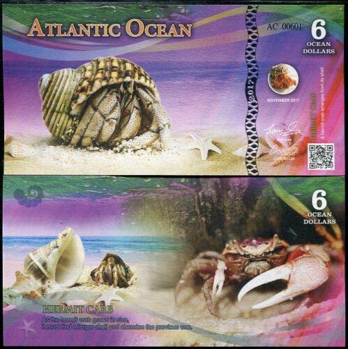 ATLANTIC OCEAN 6 DOLLARS HERMIT CRAB 2017