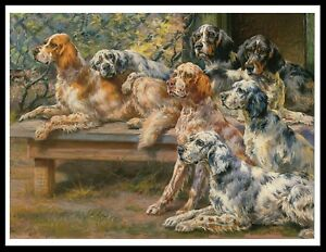 English Print Golden Cocker Spaniel Puppy Dog Dogs Vintage Art Picture Poster