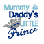 Mummy and Daddy/'s Little Prince Embroidered Bib by Daisy Chain Embroidery