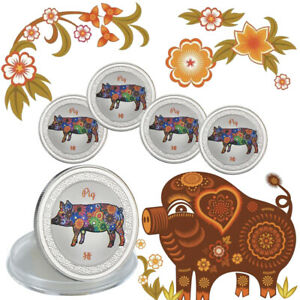WR-5pcs-2019-Year-Of-The-Pig-Beautiful-Silver-Coin-As-Best-Gift